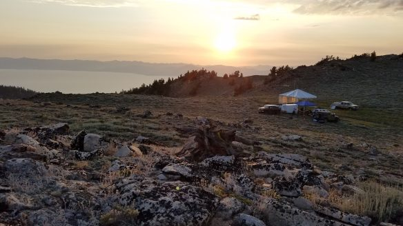 Tahoe Rim Trail Ultra Endurance Run